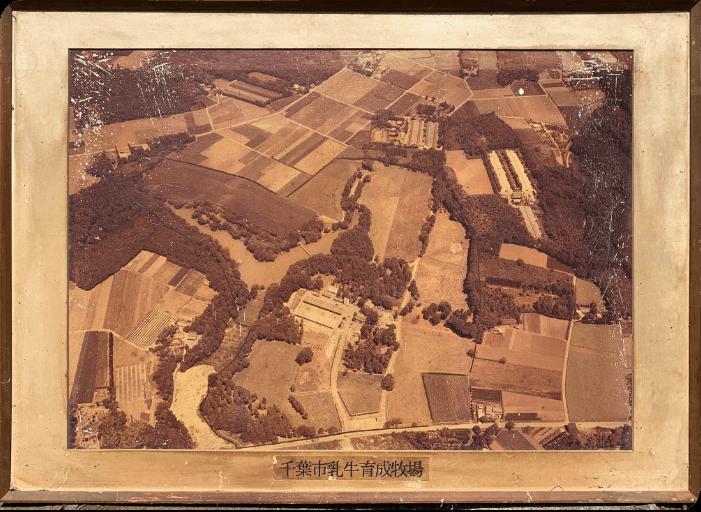 1968年 市営牧場として開業